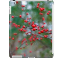 Red Spheres of Nature iPad Case/Skin