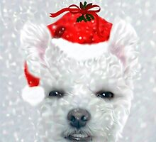 Christmas Puppy Portrait by CarolM
