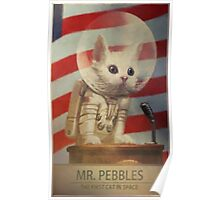Fallout 4 Mr. Pebbles Poster