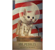 Fallout 4 Mr. Pebbles Photographic Print
