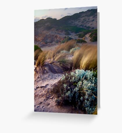 Early Evening on the Dunes Greeting Card