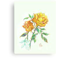 Golden Yellow Miniature Rose  Canvas Print