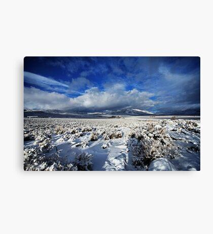 High Desert Snows Canvas Print