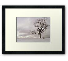 The Naked Earth Framed Print