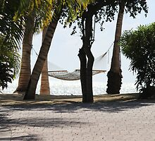 Hammock by the Sea by Karen Harris