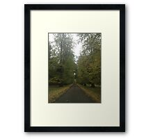 Drive through the trees Framed Print