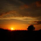 THE SUNSET by leonie7
