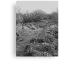 Ashover Rock Path Canvas Print
