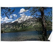 Grand Tetons Mountain and Jenny Lake Poster