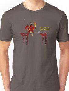 You shall not pass! Unisex T-Shirt