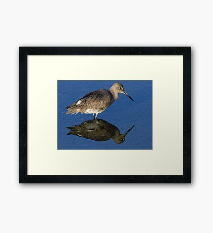 Which Is Right Side Up? Framed Print