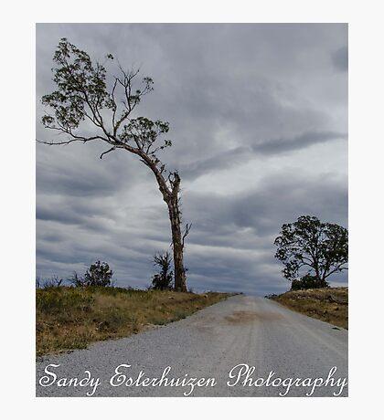 """Secret Road"" Photographic Print"