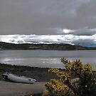 Isle of Skye  by Marcia Luly