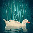 Duck Reflected by victorsbeard