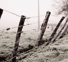 Fence by Lenoirrr