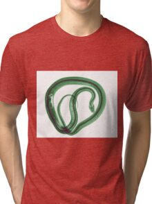 Snake under x-ray a whole mouse can be seen  Tri-blend T-Shirt