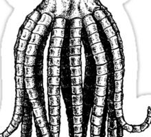 Skull octopus/davy jones Sticker