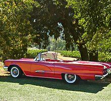 1958 Ford Thunderbird Convertible II by DaveKoontz