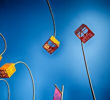 Taronga China by Steven Powell