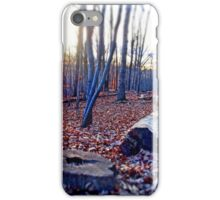Surreal Woods  iPhone Case/Skin