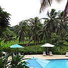 Vanuatu Resort Pool by Marcia Luly