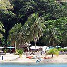 Vanuatu Boats by Marcia Luly