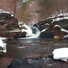 Winter's Retreat at Murray Reynolds Falls by Gene Walls