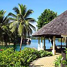 Vanuatu Erongo Hut by Marcia Luly