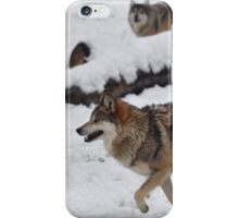 Two Wolves iPhone Case/Skin