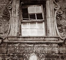 Looking glass by Kingstonshots