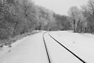 Snow Tracks by Greg Belfrage