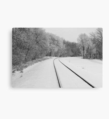 Snow Tracks Canvas Print