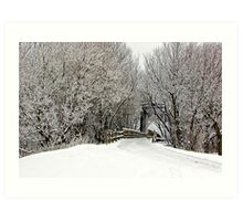 Trestle in the Trees Art Print
