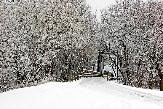 Trestle in the Trees by Greg Belfrage