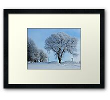 Winter Frosting Framed Print