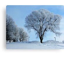 Winter Frosting Canvas Print