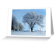 Winter Frosting Greeting Card