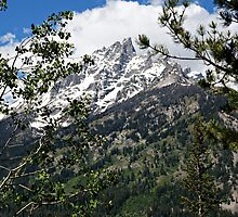 Grand Tetons Jagged Peak by Michael Kirsh