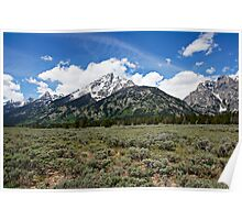 Grand Tetons and Brush Poster