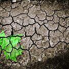 Broken Earth by Steven Powell