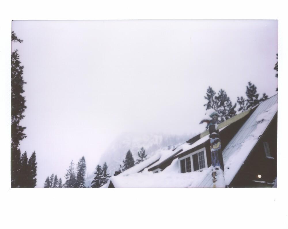 strawberry lodge. by Stephanie Welling
