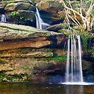 Mullet Creek Falls by Werner Padarin