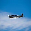 P-47D _ No Guts, No Glory by Nick Sage