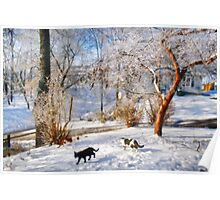 Snowcats Poster