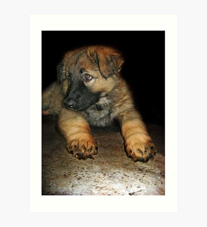 What do mean, my paws are too big ?  Art Print