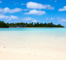 Tropical beach with palm trees and blue water by PhotoStock-Isra