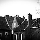 Roof tops in black and white by pahas