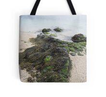 Rocks and seaweed Tote Bag