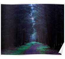 Northumberland Forest Poster