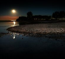 moonscape by james smith